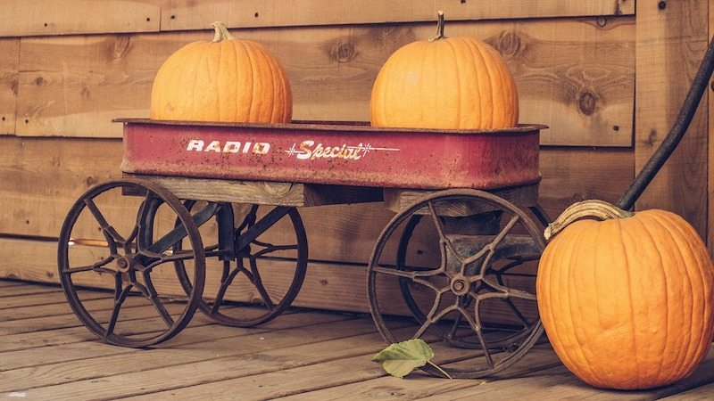 Two pumpkins in a red wagon in Marlborough